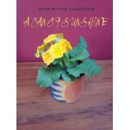 A Can of Sunshine by Christine Leunens