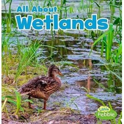 All About Wetlands (Habitats)