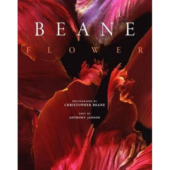 Flower: Christopher Beane
