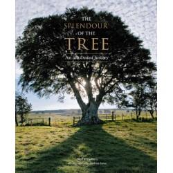 SPLENDOUR OF THE TREE