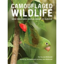 Camouflaged Wildlife